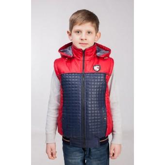 Куртка-жилет для мальчика украина, заказать недорого низкая цена.